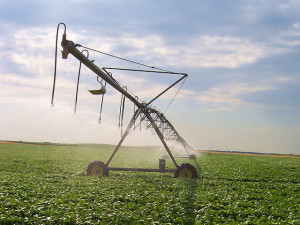 center pivot irrigation crop circle 10