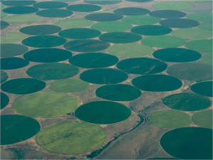center pivot irrigation crop circle 16